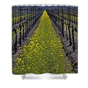Sonoma Mustard Grass Shower Curtain
