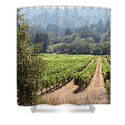 Sonoma Vineyards In The Sonoma California Wine Country 5d24515 Square Shower Curtain