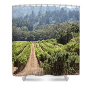 Sonoma Vineyards In The Sonoma California Wine Country 5d24518 Shower Curtain