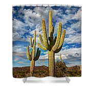 Sonoran Desert Beauty Shower Curtain
