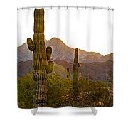 Sonoran Desert II Shower Curtain by Robert Bales