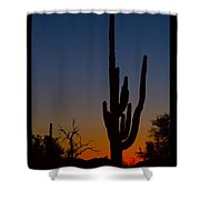 Sonoran Desert Sunrise Poster Print Shower Curtain