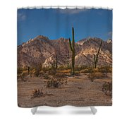 Sonoran  Shower Curtain