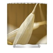 Soothing Art Shower Curtain