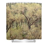 Soothing Desert Shower Curtain