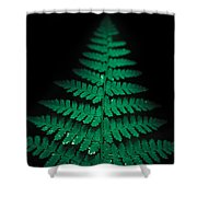 Soothing Fern Shower Curtain
