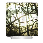 Soothing Force Shower Curtain