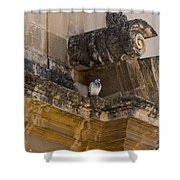 Sophisticated Baroque Bird Perch Shower Curtain