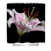 Sorbonne Lily-0002 Shower Curtain