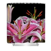 Sorbonne Lily Macro Shower Curtain
