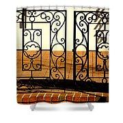 Sorosis Gate Shower Curtain