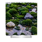 Sos To The World Shower Curtain