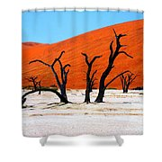 Sossusvlei Scene Shower Curtain