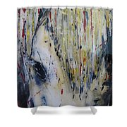 Soul Mare Shower Curtain
