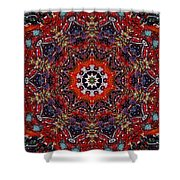 Soul Of The Universe Shower Curtain