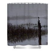 Sound Of Spring Shower Curtain