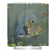 #south American Pacu Shower Curtain