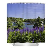 South Bristol And Lupine Flowers On The Coast Of Maine Shower Curtain