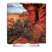 South Coyote Buttes Grand View Shower Curtain by Inge Johnsson