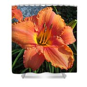 South Seas Daylily Shower Curtain
