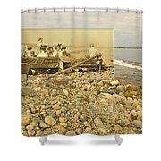 South Shore Beach In Little Compton Rhode Island Shower Curtain