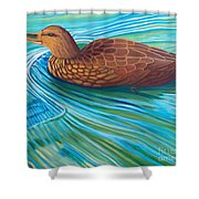 South Shore Shower Curtain