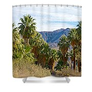 South Side View Of Andreas Canyon Trail In Indian Canyons-ca Shower Curtain