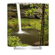 South Silver Falls 2 Shower Curtain