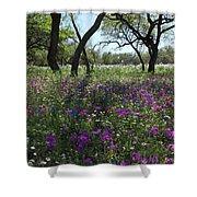South Texas Meadow Shower Curtain