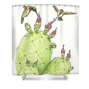 South Texas Nopales For Breakfast Shower Curtain