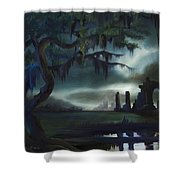 Southern Arch Shower Curtain