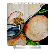 Southern Beauty Shower Curtain
