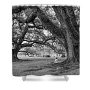 Southern Dreamer Bw Shower Curtain