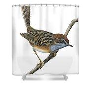 Southern Emu Wren Shower Curtain
