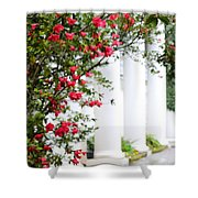 Southern Home - Digital Painting Shower Curtain