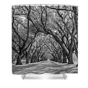 Southern Journey Bw Shower Curtain