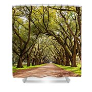 Southern Journey Paint Shower Curtain