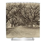 Southern Journey Sepia Shower Curtain