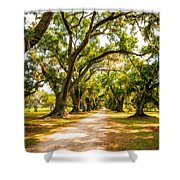 Southern Lane 2 Shower Curtain