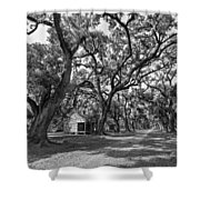 Southern Lane Monochrome Shower Curtain