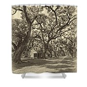 Southern Lane Sepia Shower Curtain