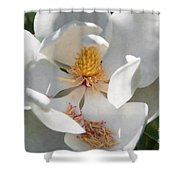 Southern Magnolia Blossom Shower Curtain