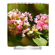 Southern Myrtle Shower Curtain