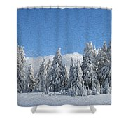 Southern Oregon Forest In Winter Shower Curtain