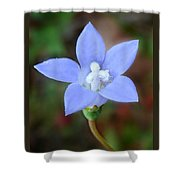 Wild Southern Rockbell  Shower Curtain