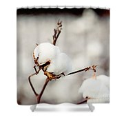 Southern Snow Shower Curtain