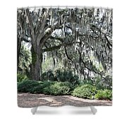 Southern Trees Shower Curtain