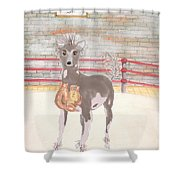 Southpaw Shower Curtain