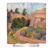 Southwest Delight Shower Curtain