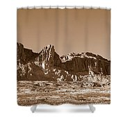 Southwest In Sepia  Shower Curtain